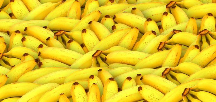 רפובליקת בננות
