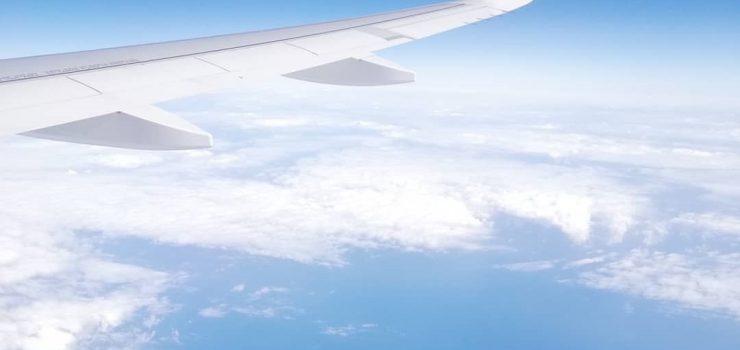 ההגירה שלי לניו זילנד חלק 3: השיבה לא מרצון לישראל